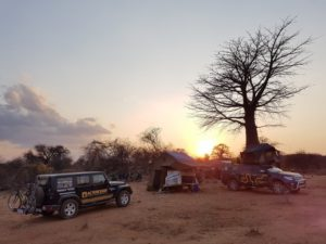 Awesome bush camp by a baobab